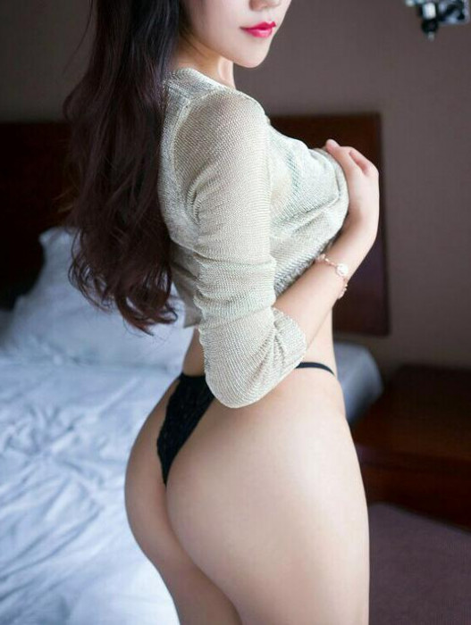 Darwin | Escort YOKO-21-25683-photo-1